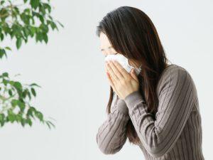 ルイボスティー炎症